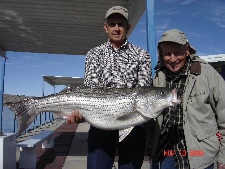 Thirty Pound Striped Bass caught by 90 Year Old - Duke Klingeman