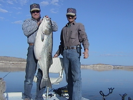 Brothers, Steve and Lew Manguso and their 43.4# Striped Bass