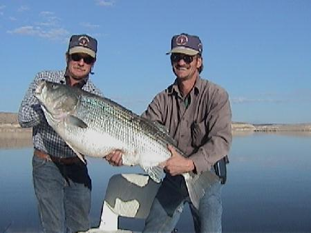 Brothers, Steve and Lew Manguso and their 43.4# Striper