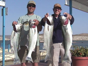 Guides from SFGC with their Stripers!