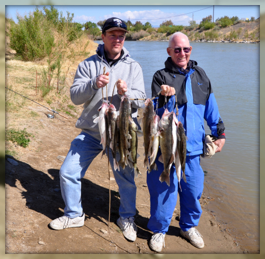 Walleye Fishing Elephant Butte, New Mexico